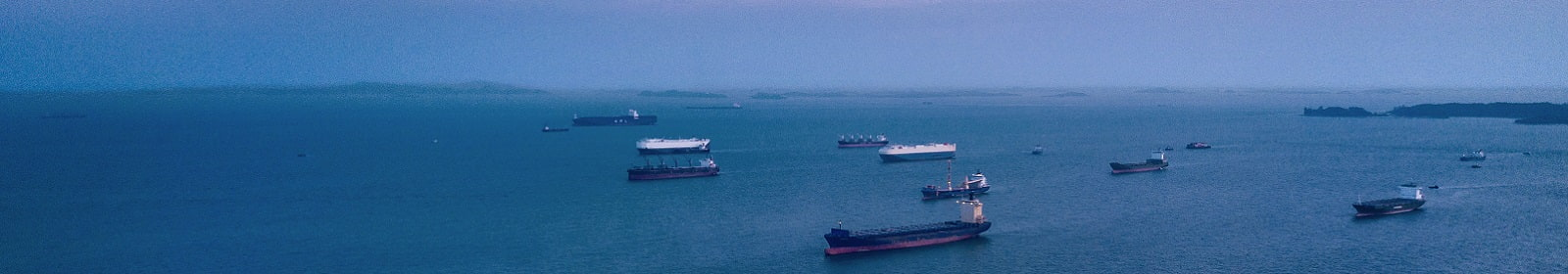 Cargo ships wait offshore to dock