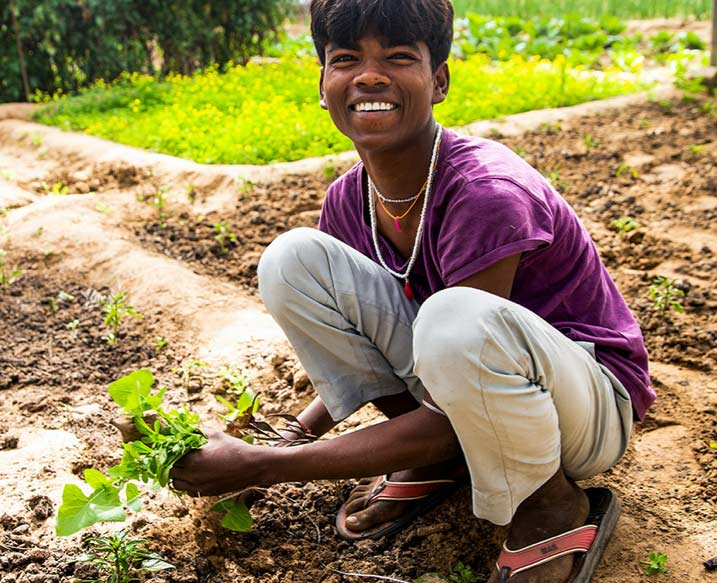 A worker crouches in a field. He smiles as he prepares to place a healthy plant in the freshly tilled soil.