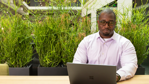 Person works on laptop with clean verdant background