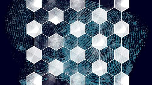 Hexagonal pattern over fingerprint