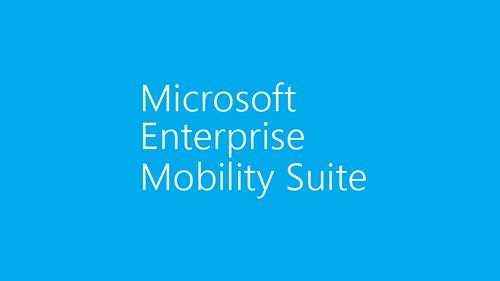 Illustration of Microsoft EMS logo