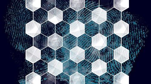 Hexagonal pattern over a fingerprint