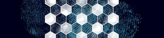 Hexagonal pattern over fingerprints