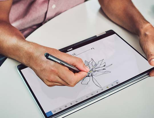 Person sketches flower image on laptop screen