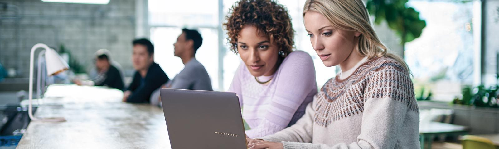 Two female colleagues working on laptop computer
